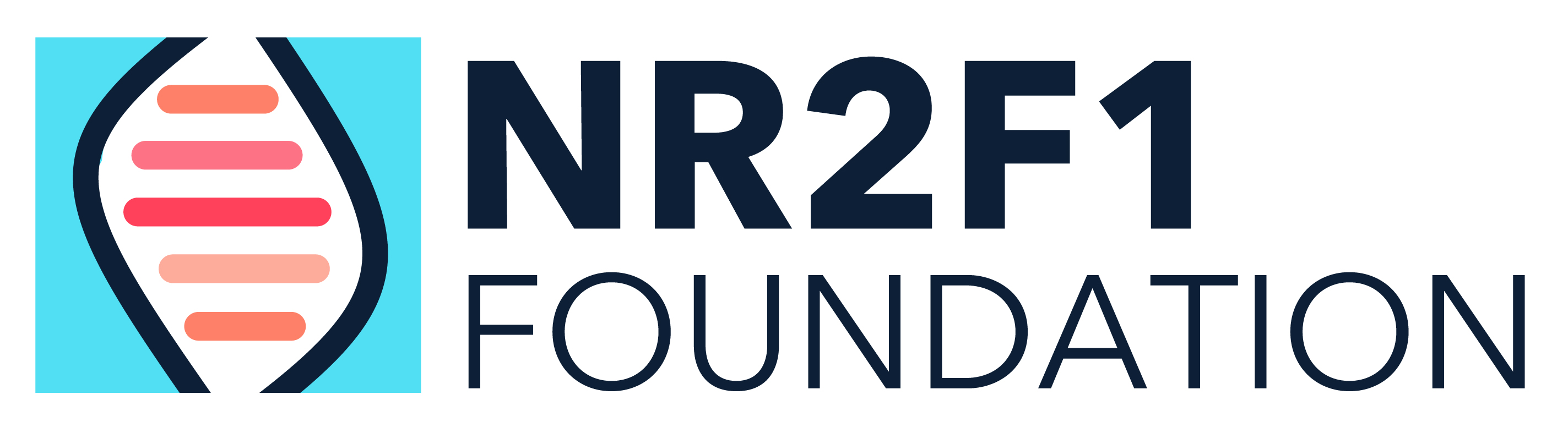 NR2F1 Foundation